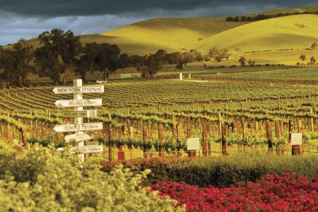 australia-Barossa-scenic-view