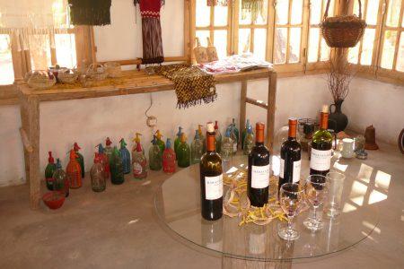 Argentina-salta-wine-tasting