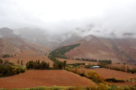 chile-elqui-valley