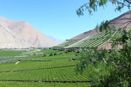 chile-elquivalley