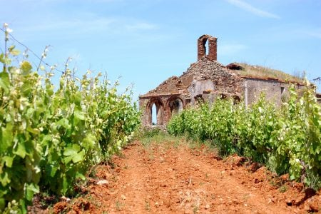 portugal-vinho-verde