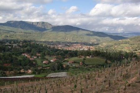 bolivia-samaipata-vineyard