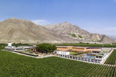 Vinas queirolo Ica Peru
