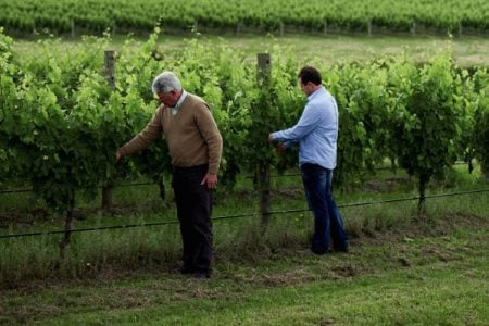 australia-yarra-portet-wines