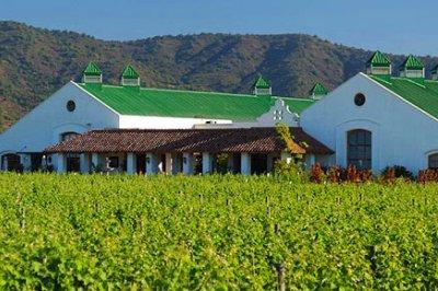 wine-estate