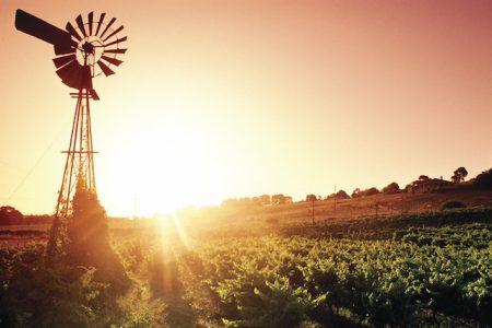 Australia-Barossa Valley-sunset