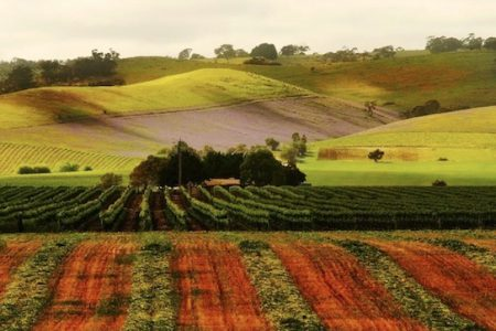 Australia-barossa-valley