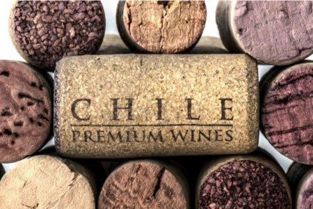 chile-wine-premium