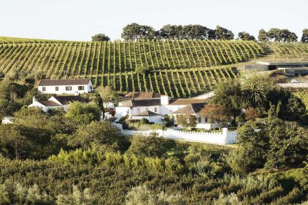 portugal-chocapalha-wine-estate