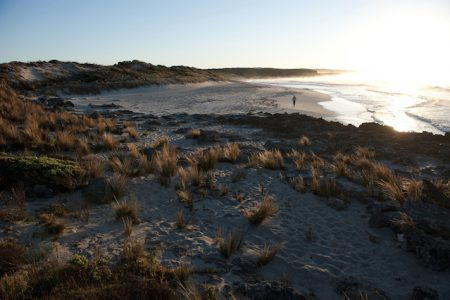 australia-kangaroo-island