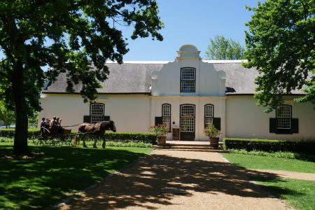 south-africa-wine-estate