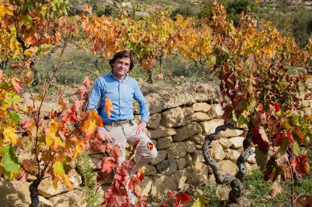 Spain-vineyard-autumn-telmo-rodriguez