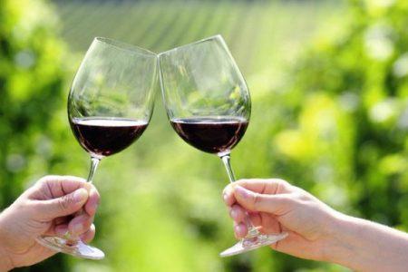 chile-wine-tasting-red-wine