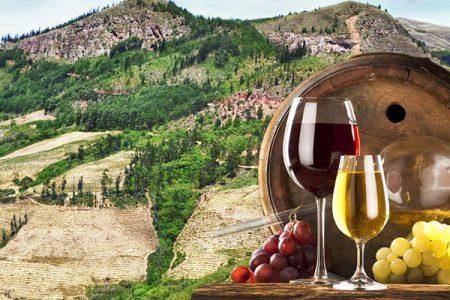 Samaipata Wine Tours Bolivia
