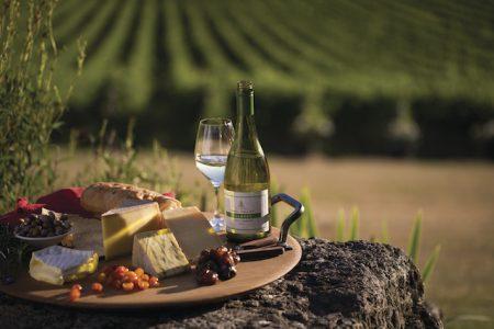 Australia-Yarra-Valley-wine-tasting-De-Bortoli
