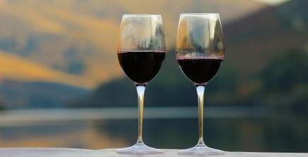 portugal-wine-tasting
