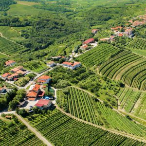 Our itinerary Slovenia, Travel to the heart of a preserved land Vino Mundo