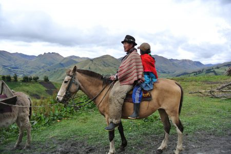 ecuador_horse_local_transportation