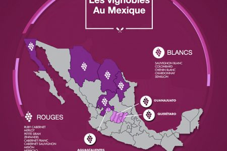 map vineyards Mexico