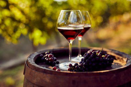 Croatia Two glasses of red wine in the vineyard