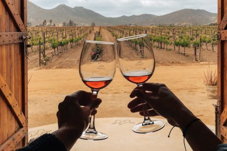 wine-in-Valle-de-Guadalupe-baja california-Mexico