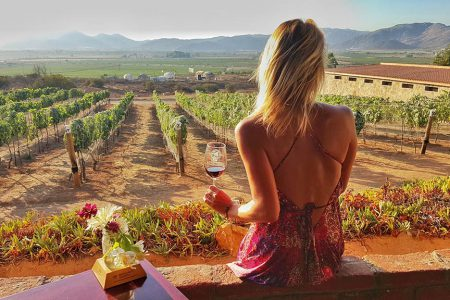 hacienda-guadalupe-Mexico-baja-california-wine tasting